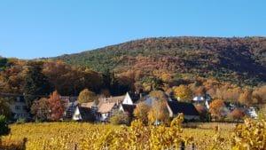 Gleisweiler in der Südpfalz