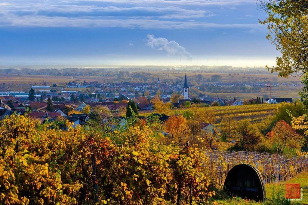 Maikammer In Der Pfalz Www Pfalz Info Com