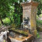 Der König Ludwigs-Brunnen an der Burgschänke Kropsburg bei St. Martin in der Pfalz