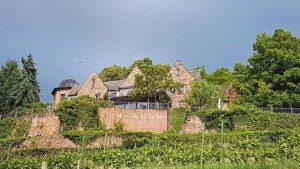 Die Kropsburg über Sankt Martin in der Pfalz