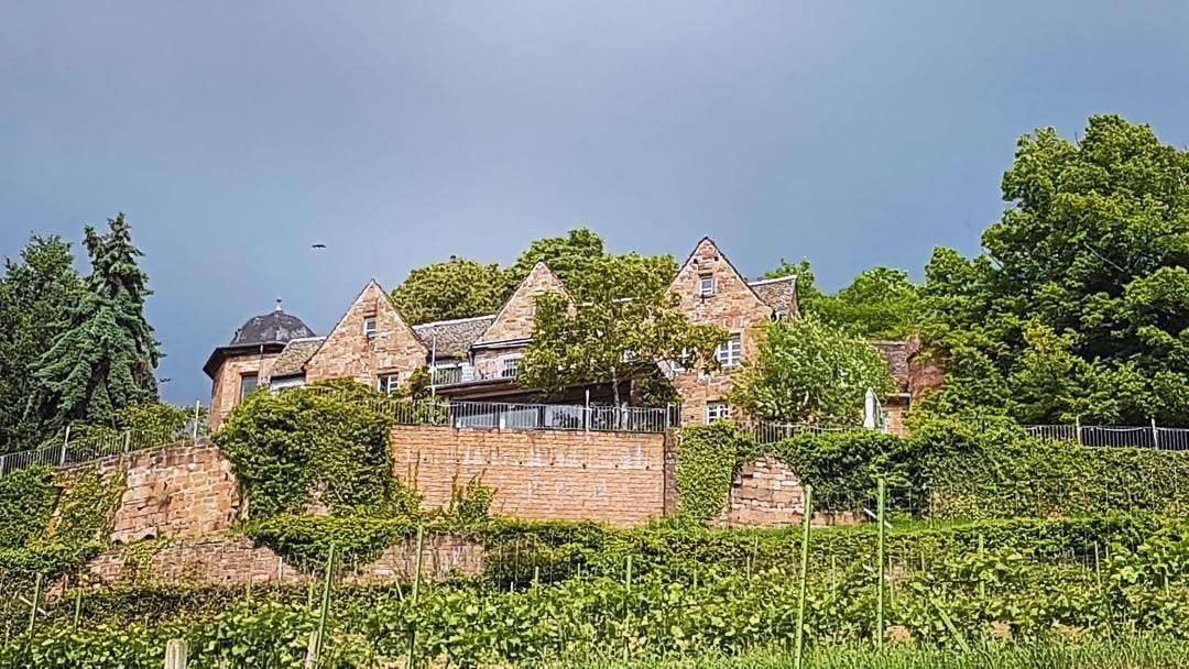 Sankt Martin In Der Pfalz Www Pfalz Info Com