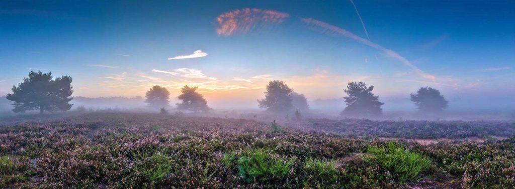 Mehlinger Heide © Christian Fernández Gamio Photoart