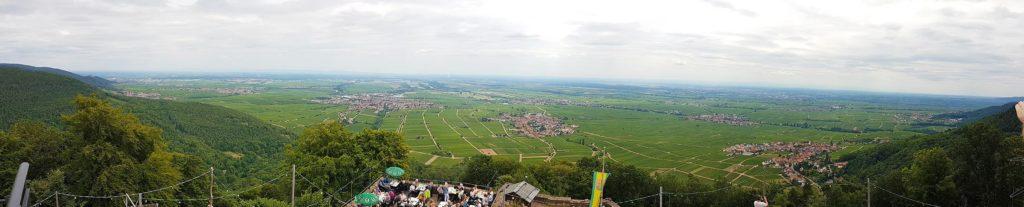 Panoramablick Rheinebene - Rietburg in der Pfalz