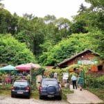 Die Rietania-Hütte zwischen Rhodt und Weyher