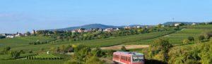 Dackenheim in der Pfalz