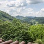 Panoramablick über den Pfälzerwald von Burg Berwartstein aus - Foto: Andreas Ott