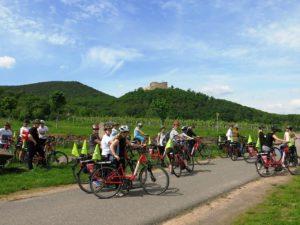 Genussradeln Pfalz - Event Arend
