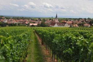 Mörzheim bei Landau in der Südpfalz