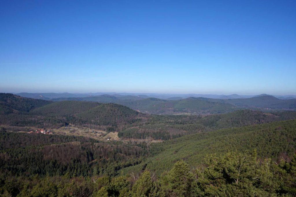 Der Blick vom Stäffelsbergturm, Dörrenbach in der Südpfalz - Pfälzerwald
