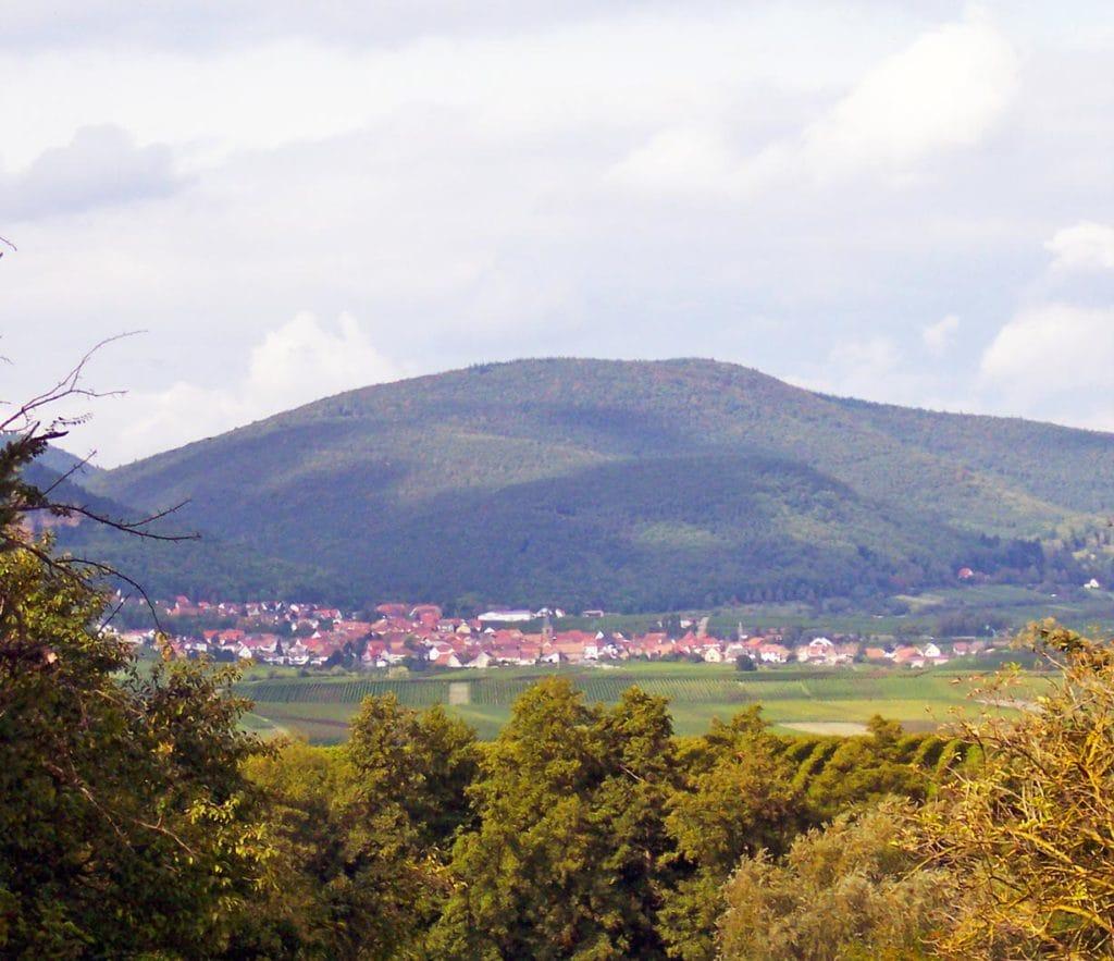 Arzheim in der Pfalz