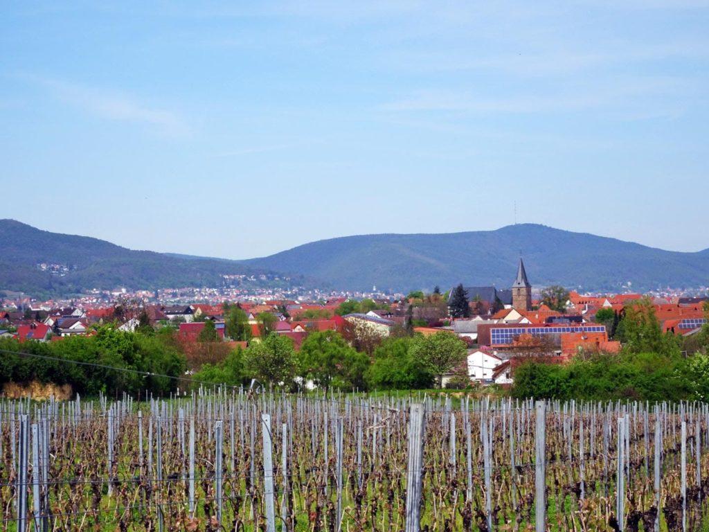 Kirrweiler an der Südlichen Weinstraße