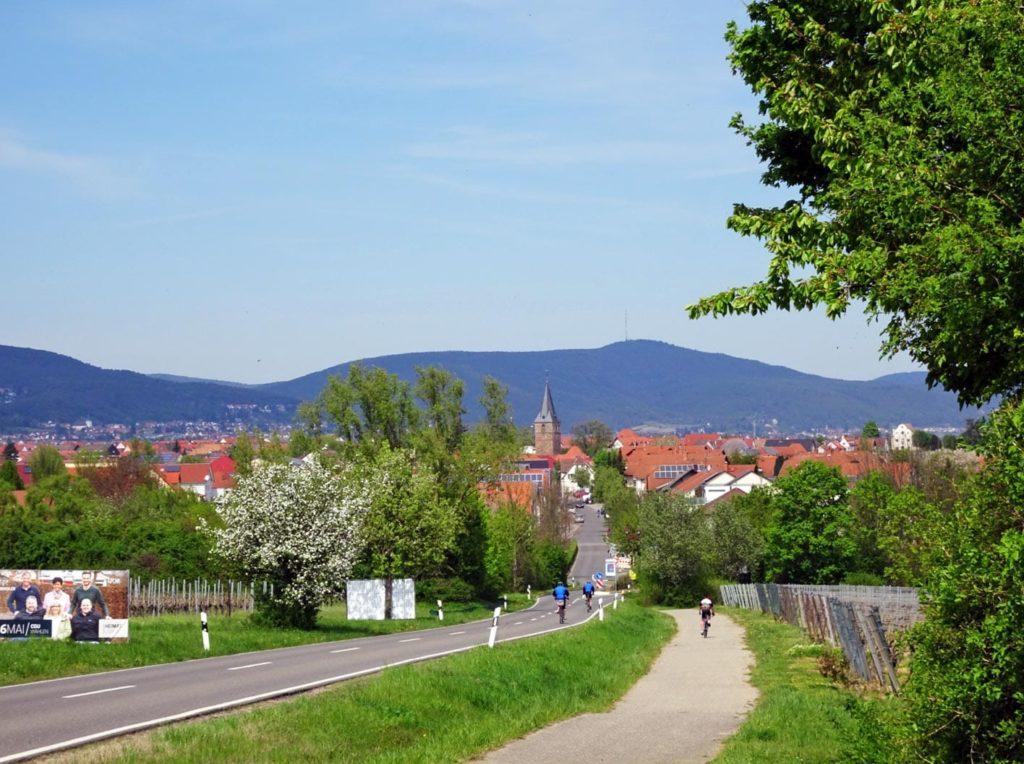 Kirrweiler an der Südlichen Weinstraße in der Pfalz