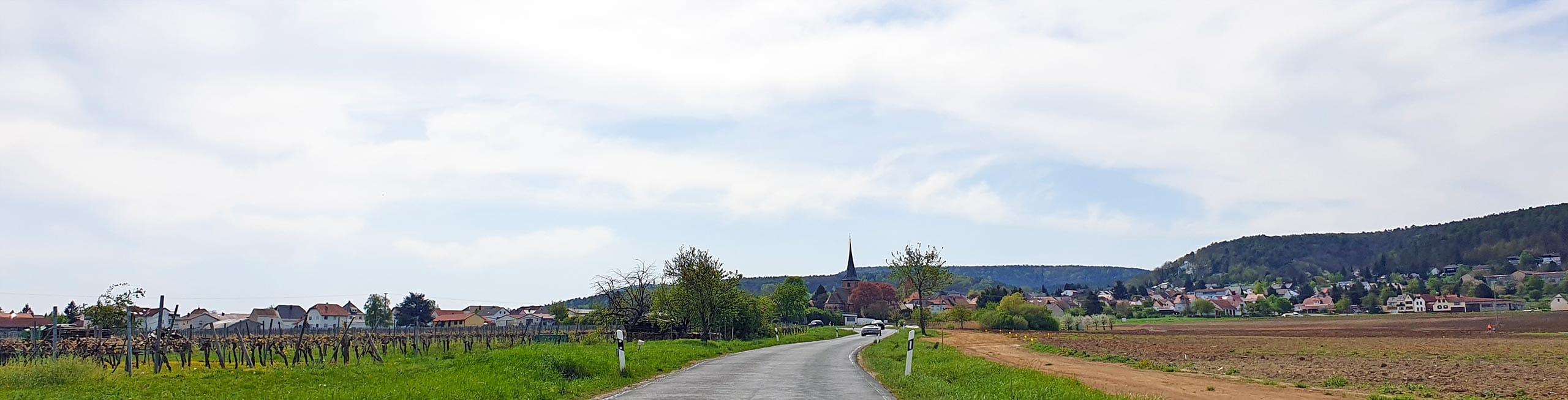 Weisenheim am Berg in der Pfalz | www.pfalz-info.com