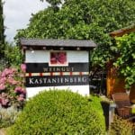 Kastanienberg in Hainfeld