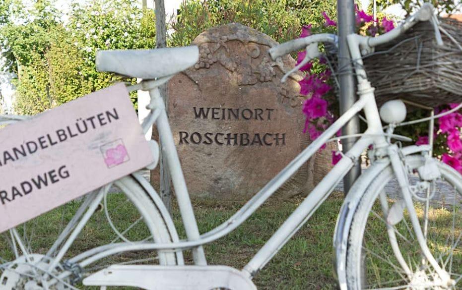 Roschbach in der Südpfalz