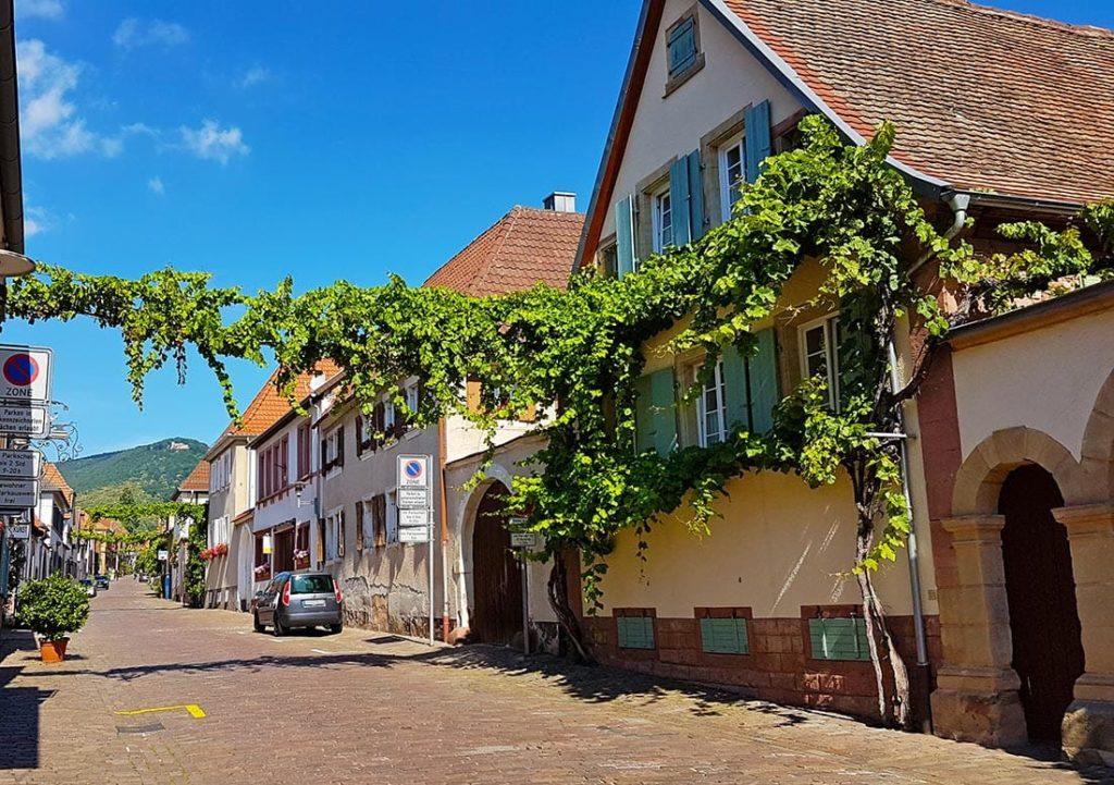 Theresienstraße in Rhodt in der Pfalz