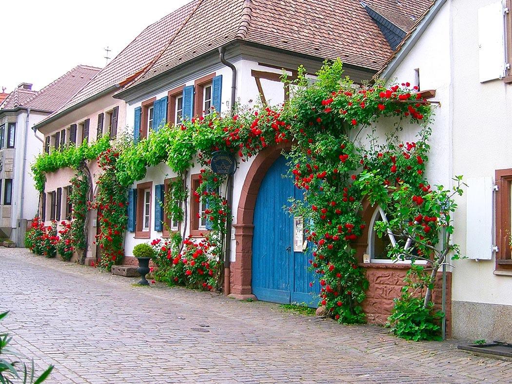 Rhodt Unter Rietburg In Der Pfalz Wwwpfalz Infocom