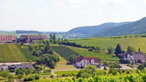 Castell in Leinsweiler mit Leinsweiler Hof