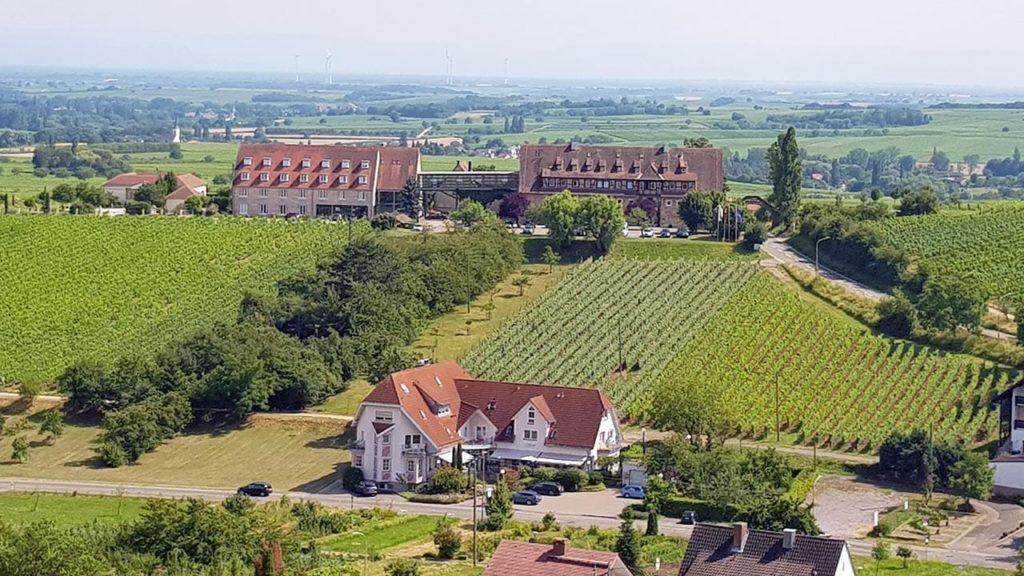 Castell in Leinsweiler in der Südpfalz