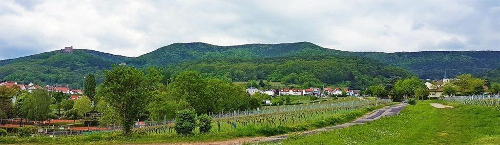 Neustadt - Hambach in der Pfalz