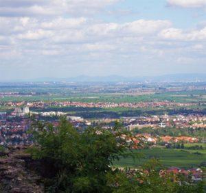 Mußbach in der Pfalz