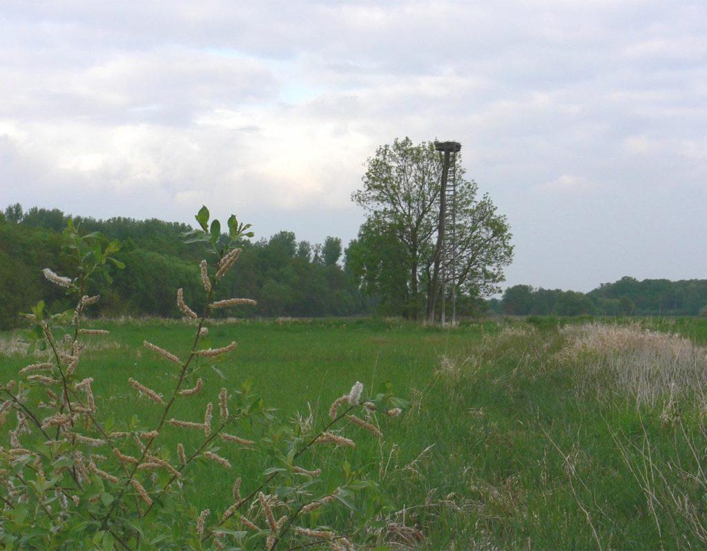 Offenbach an der Queich in der Pfalz