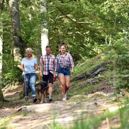 Wandern in der Nordpfalz / Donnersbergregion