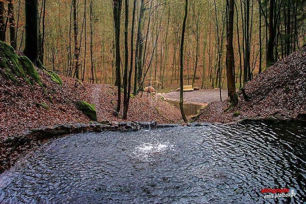 Wasserbecken bei der Bärenhöhle auf dem Rodalber Felsenweg