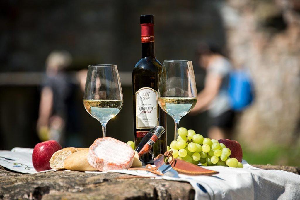 Weinwanderungen, Weinberggehungen, Terroirwanderungen in der Pfalz