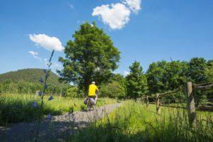 Radtouren, Fahrradfahren in der Westpfalz