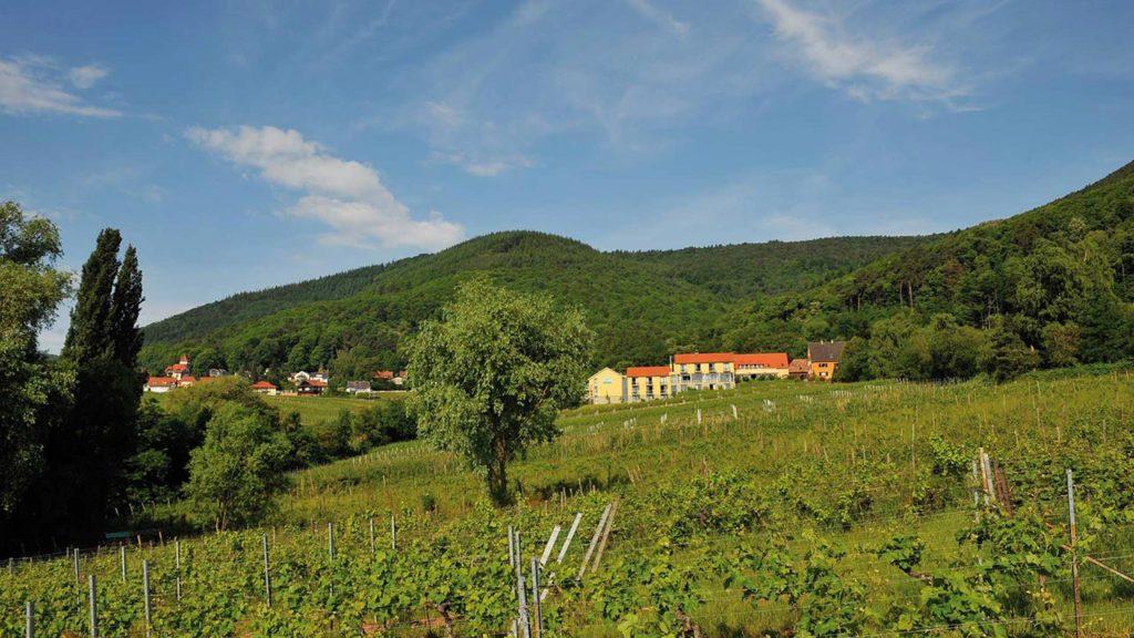 Idyllisch mitten in den Weinbergen am Rande des Pfälzerwalds gelegen: das Wohlfühlhotel Alte Rebschule in Rhodt unter Rietburg in der Pfalz