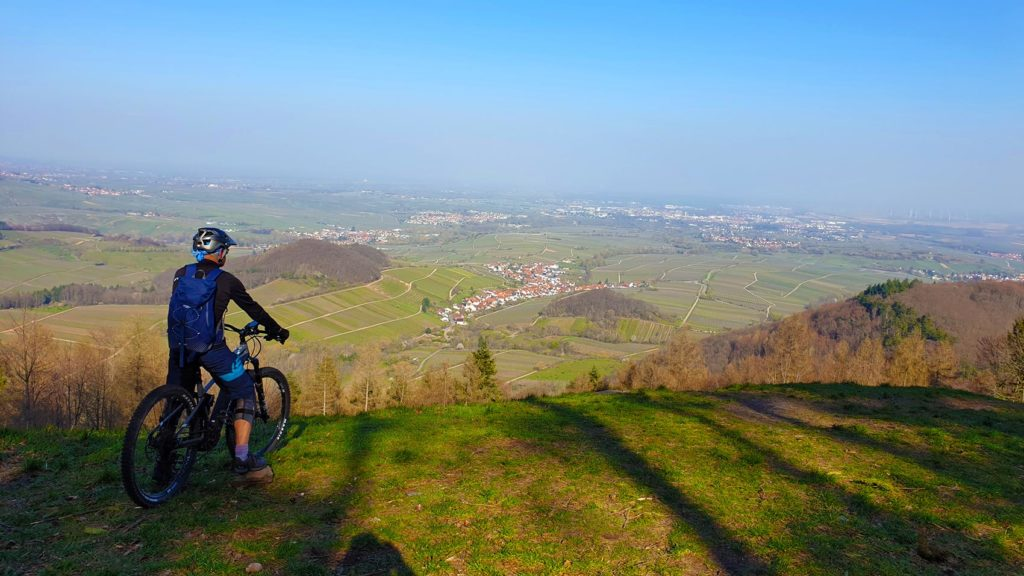 Mountainbiker blickt von Hügel auf grüne pfälzer Landschaft