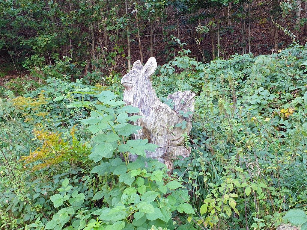 Seltener Schnappschuss einer Elwetritsch bei Dahn in der Pfalz